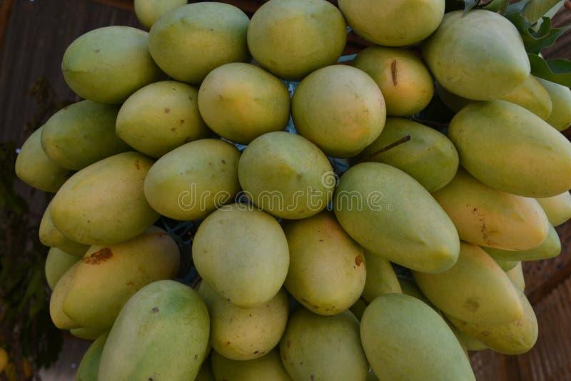 芒果,菲律宾的出口产品 免版税库存图片