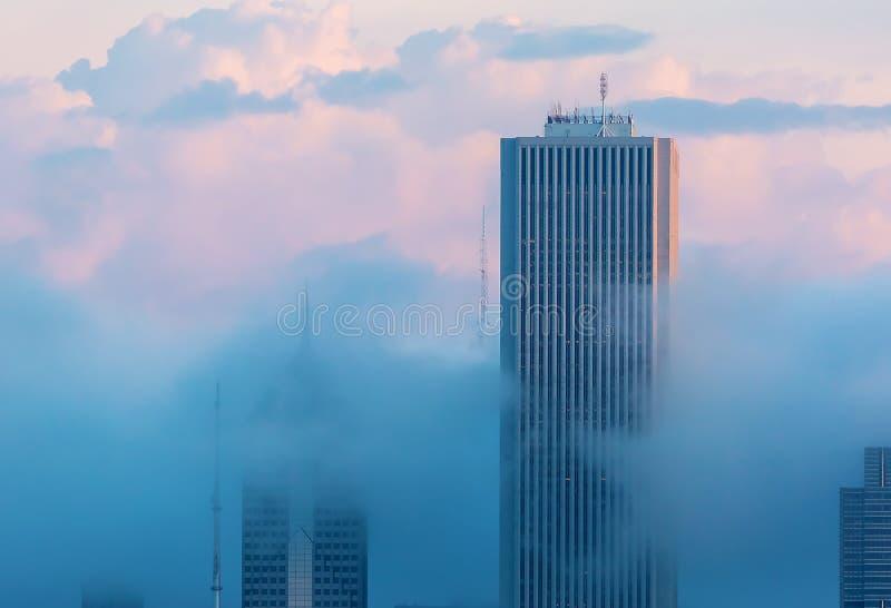 芝加哥地平线摩天大楼 免版税库存照片