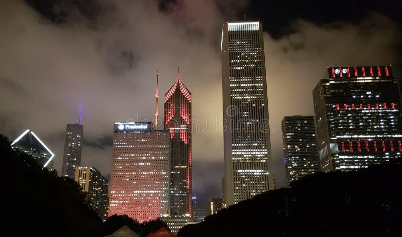 芝加哥夜场面 库存照片