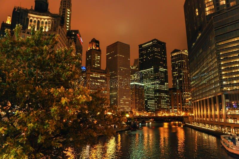 芝加哥夜视图  库存图片