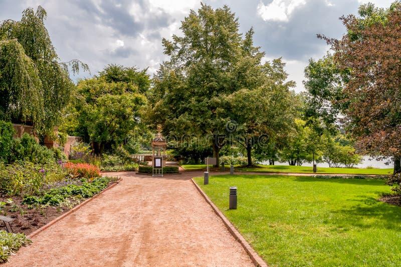 芝加哥植物园,格伦克,美国夏天风景  免版税库存图片