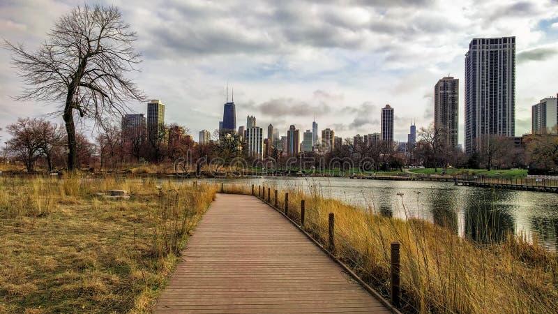 芝加哥的地平线宽场面从林肯公园的南池塘自然木板走道的 与现代建筑学的都市风景 免版税图库摄影
