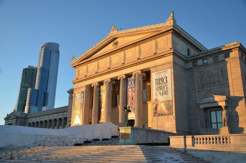 芝加哥的自然历史域博物馆 免版税库存图片