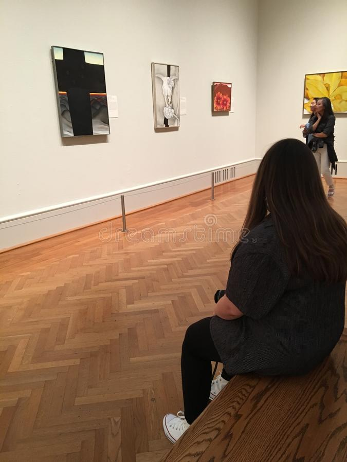 芝加哥艺术学院现代翼 图库摄影