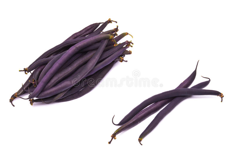 芦笋豆肾脏 库存照片