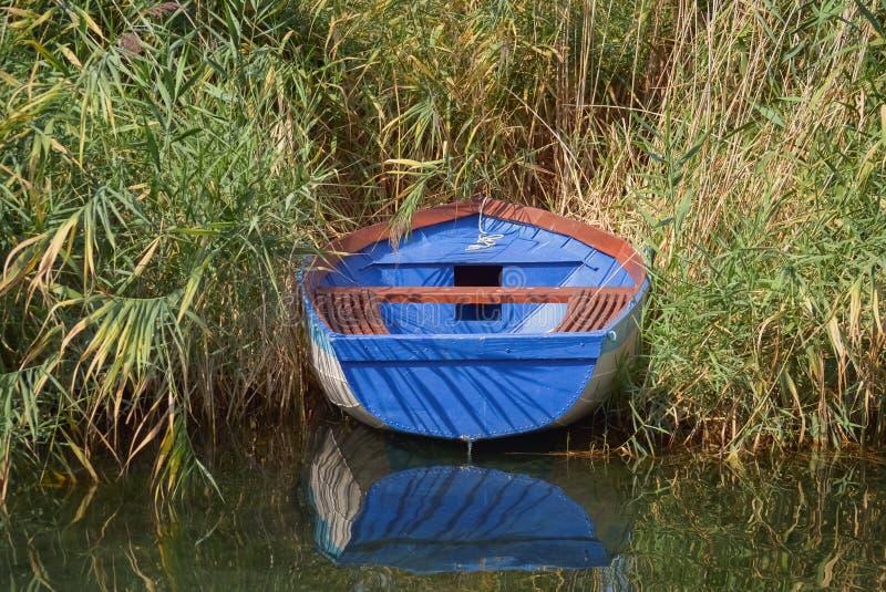 芦苇中的渔船 免版税库存图片