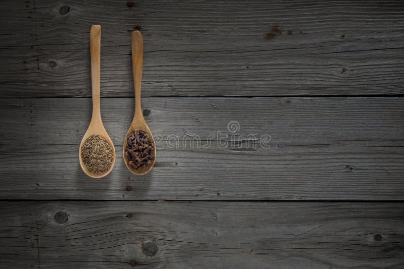 芫荽子和香料丁香在木匙子和木背景 免版税库存图片