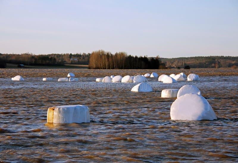 芬兰洪水河农村冬天 库存图片