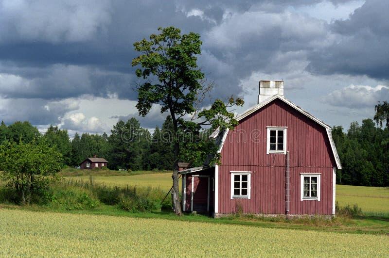 芬兰语的农场 免版税库存照片