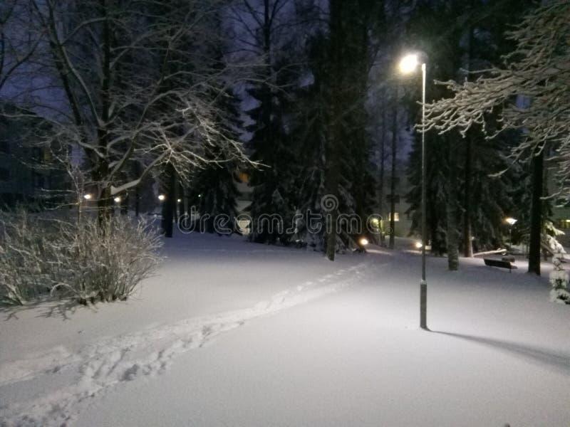 芬兰雪夜 免版税库存照片