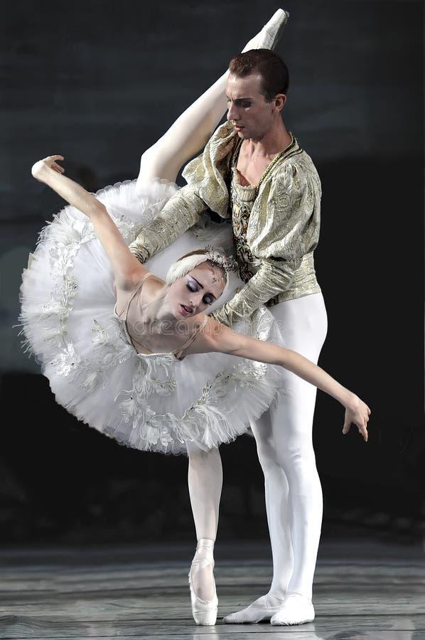 芭蕾湖执行皇家俄国天鹅 图库摄影