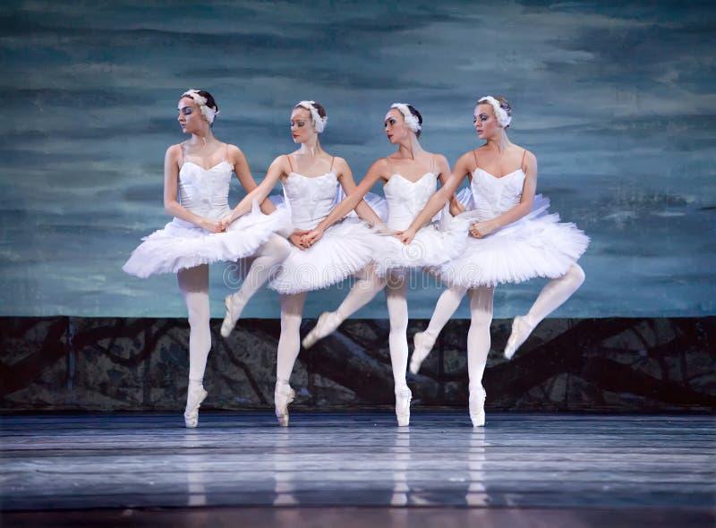 芭蕾湖perfome皇家俄国天鹅 免版税库存图片