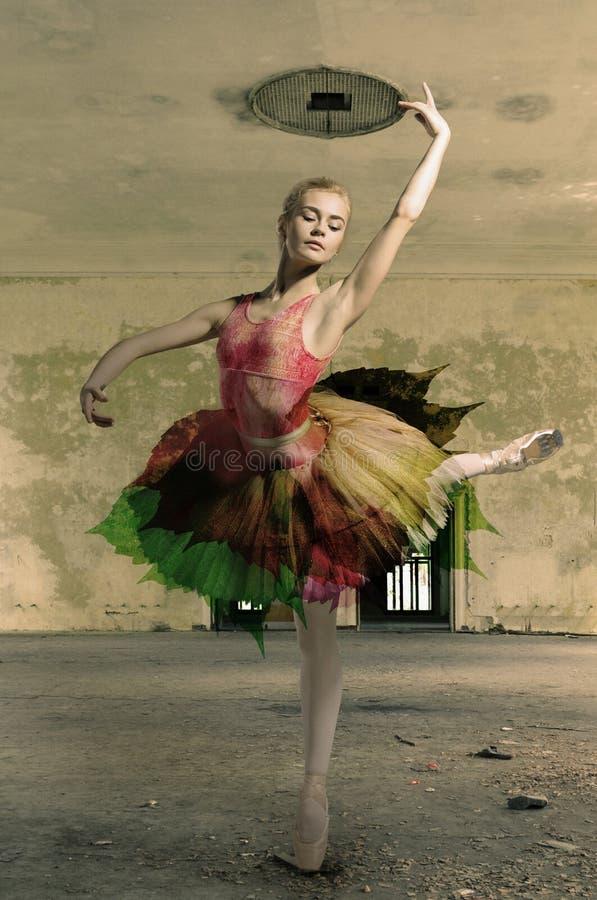 芭蕾舞女演员的画象芭蕾姿势的 图库摄影