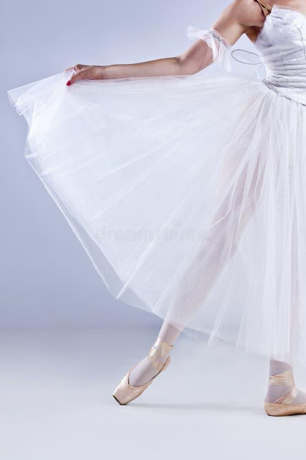 芭蕾舞女演员美好摆在 免版税图库摄影