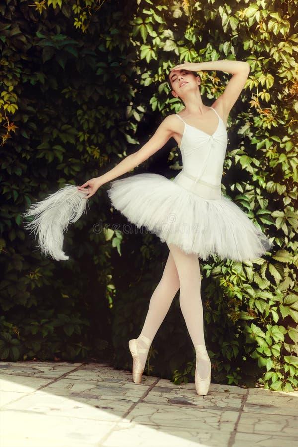 芭蕾舞女演员肉欲上跳舞本质上 库存照片