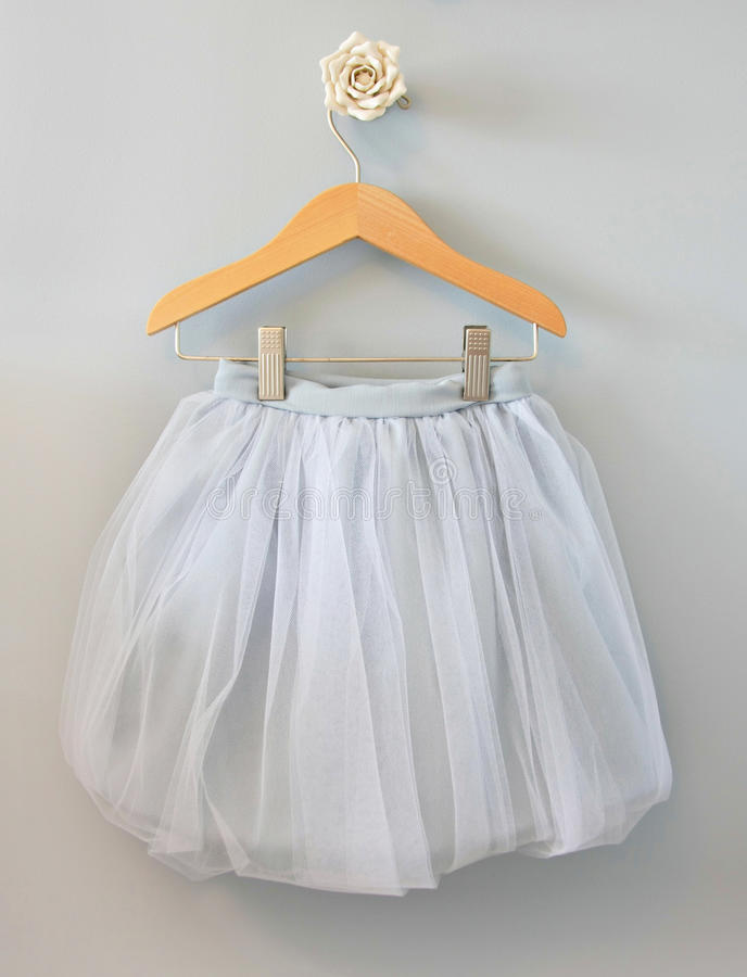芭蕾舞女演员芭蕾舞短裙 免版税库存图片