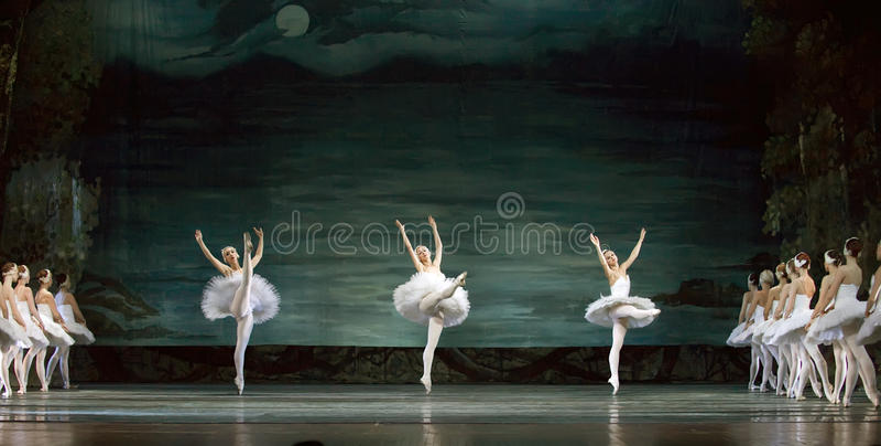 芭蕾perfome皇家俄国天鹅 免版税图库摄影