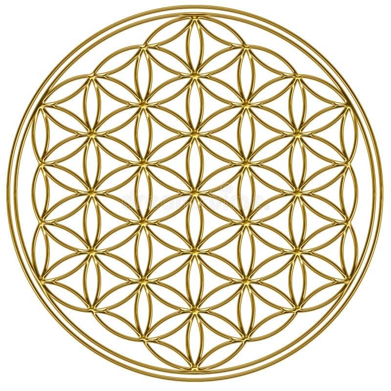人生的神圣的几何花  库存例证