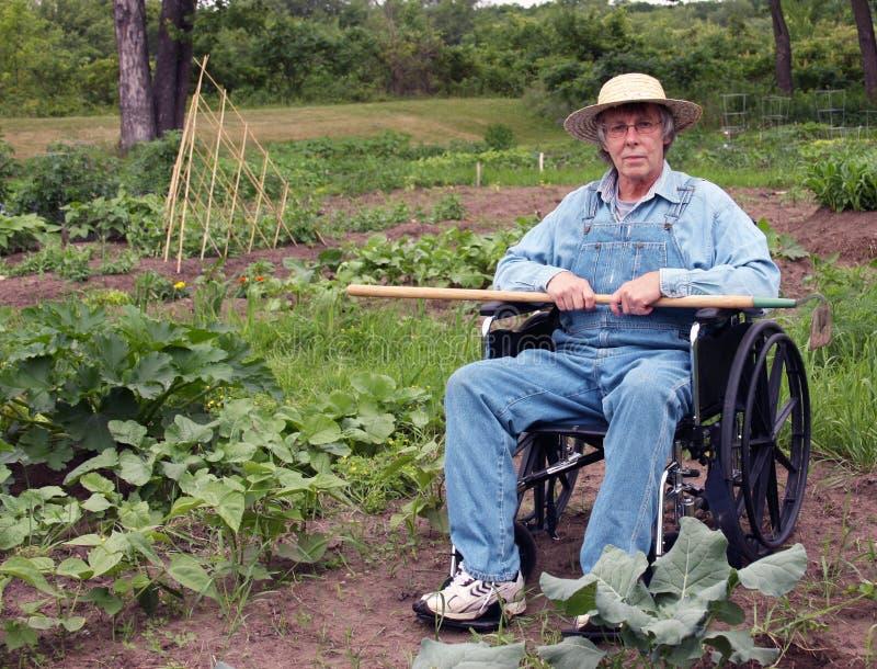 花匠有残障的轮椅 库存图片
