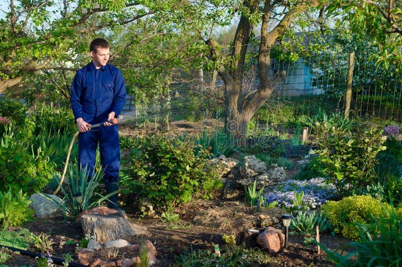 花匠浇灌的花 免版税库存图片