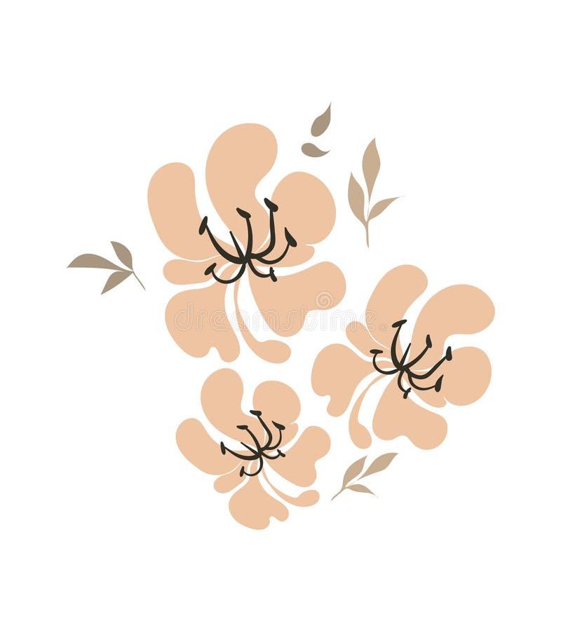 花卉传染媒介风格化设计正式构成桃红色 库存例证