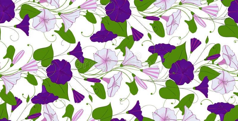 花卉典雅的背景旋花植物 无缝的嫩样式花野生植物 牵牛花不尽的女性装饰品 皇族释放例证