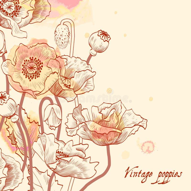 花卉卡片葡萄酒。 向量例证