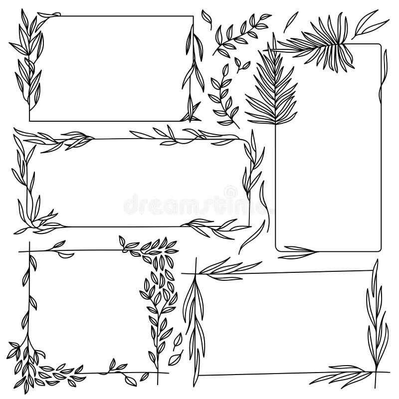 花卉图表框架集合 皇族释放例证