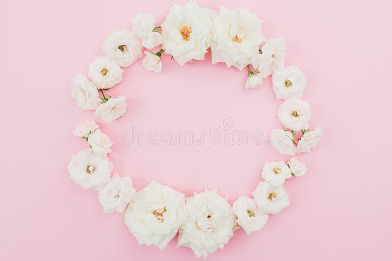 花卉圆的框架由白玫瑰做成在桃红色背景 平的位置,顶视图 抽象背景分数维图象柔和的淡色彩 免版税库存图片