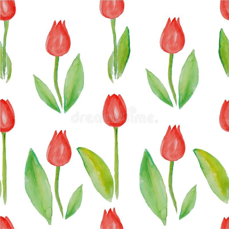 花卉无缝的样式郁金香(与绿色叶子的红色花) 皇族释放例证