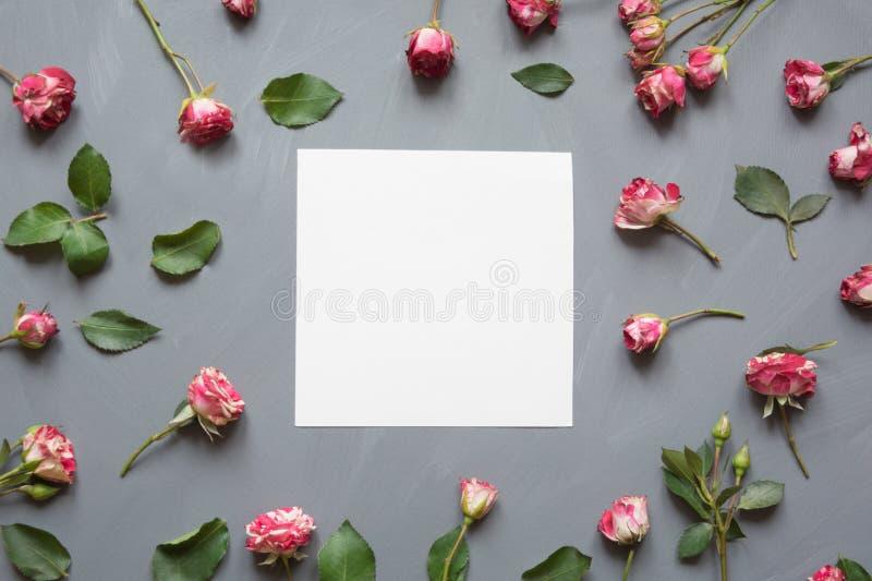 花卉样式由桃红色灌木玫瑰做成,白色空白,绿色在灰色背景离开 平的位置,顶视图 华伦泰` s 免版税图库摄影