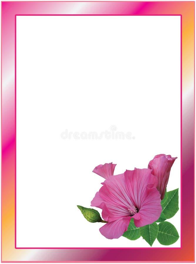 花卉框架构成系列 皇族释放例证