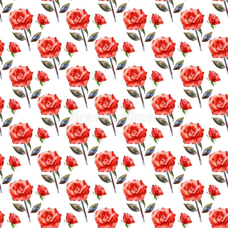 花卉模式粉红色浪漫无缝 在白色背景的水彩易碎的玫瑰 新浪漫设计为 向量例证
