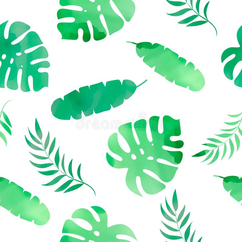花卉热带无缝的样式热带草本上色传染媒介例证 向量例证