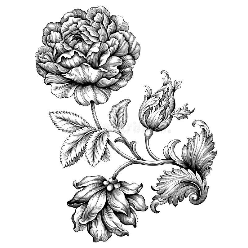 花卉罗斯花葡萄酒巴洛克式的维多利亚女王时代的框架边界 向量例证