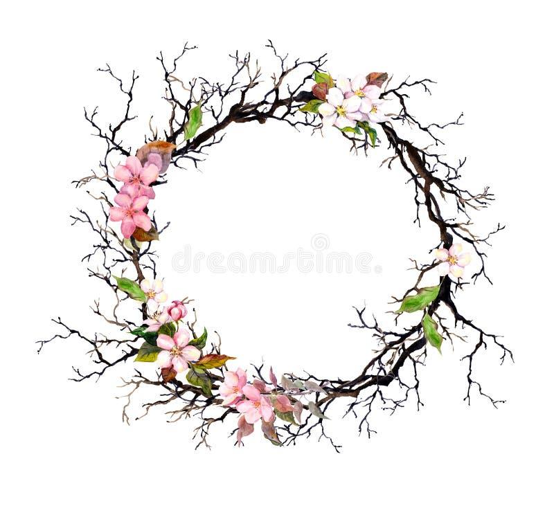 花卉花圈-桃红色花 框架来回水彩 皇族释放例证