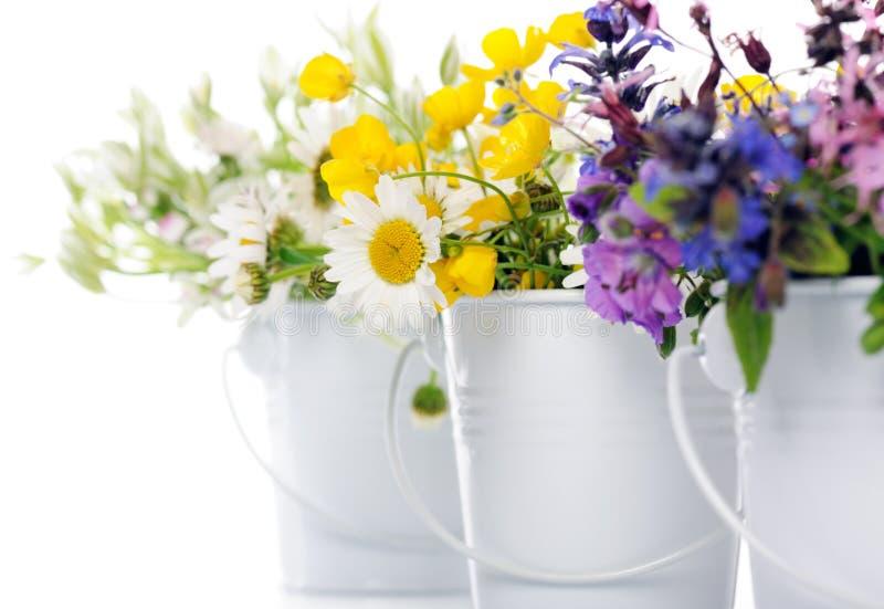 花卉装饰 免版税库存照片