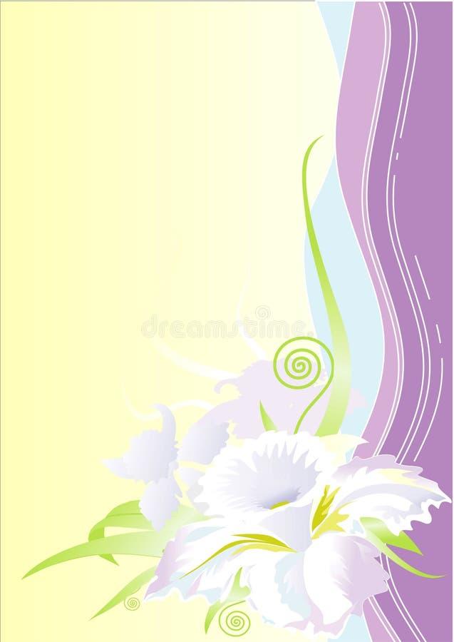 花卉1个背景 免版税库存照片