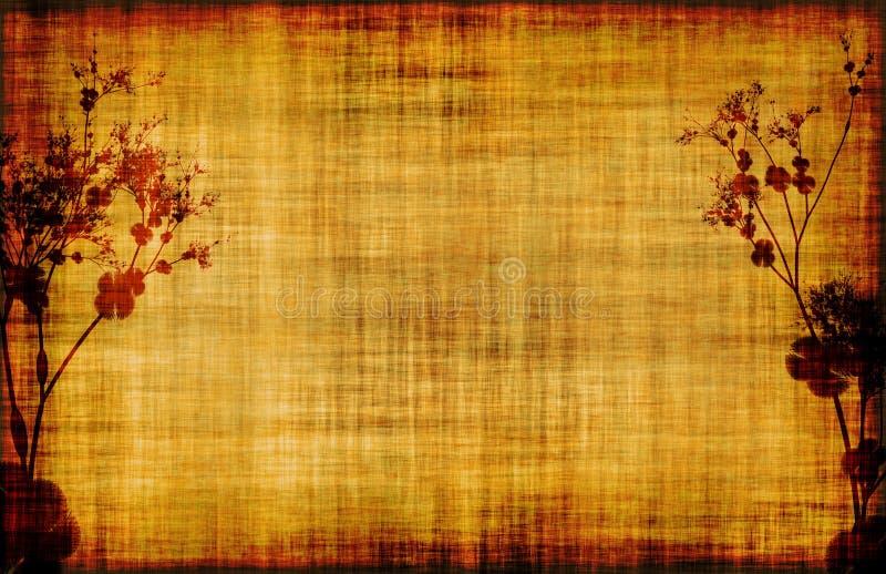 花卉grunge羊皮纸样式藤 库存例证