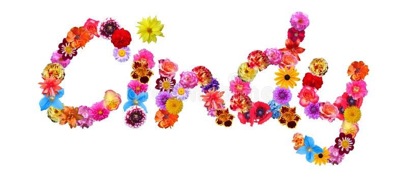 关于霍金的照片_花名字詹尼弗 库存例证. 插画 包括有 开花, 花卉, 植物群, 看板卡 ...