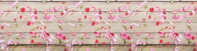花和叶子在木纹理 库存图片