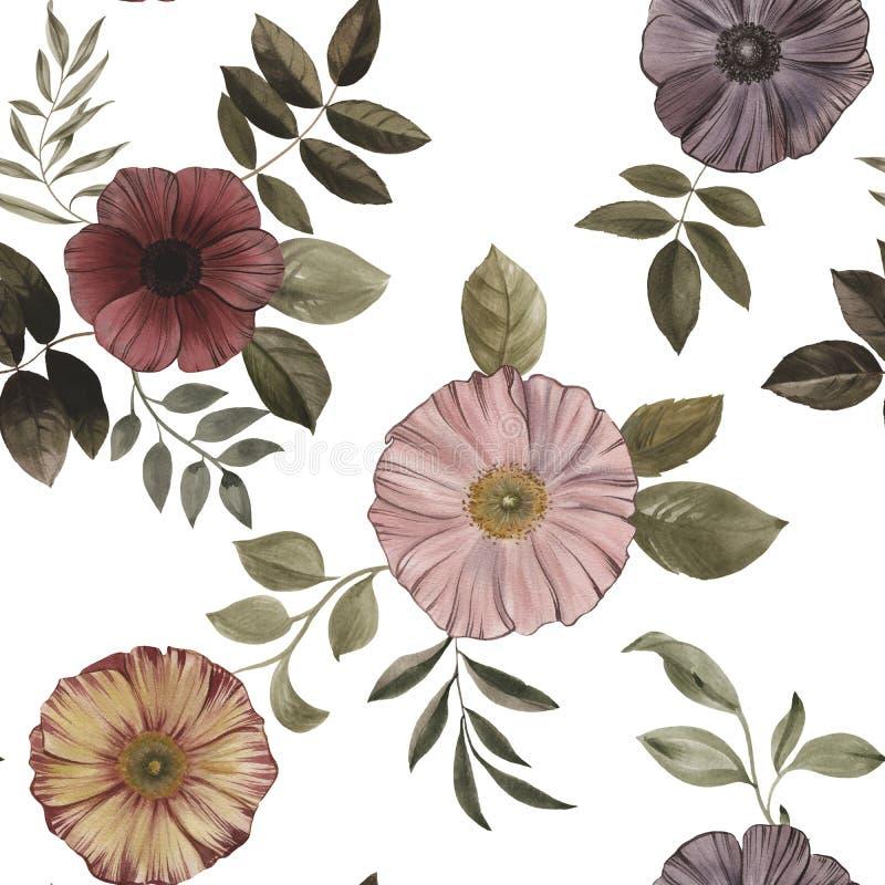 花和叶子的无缝的样式在白色背景 库存照片