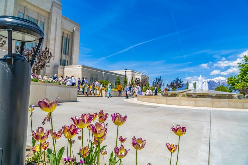 花和喷泉在一个大厦之外反对多雪的山和天空蔚蓝 免版税库存图片