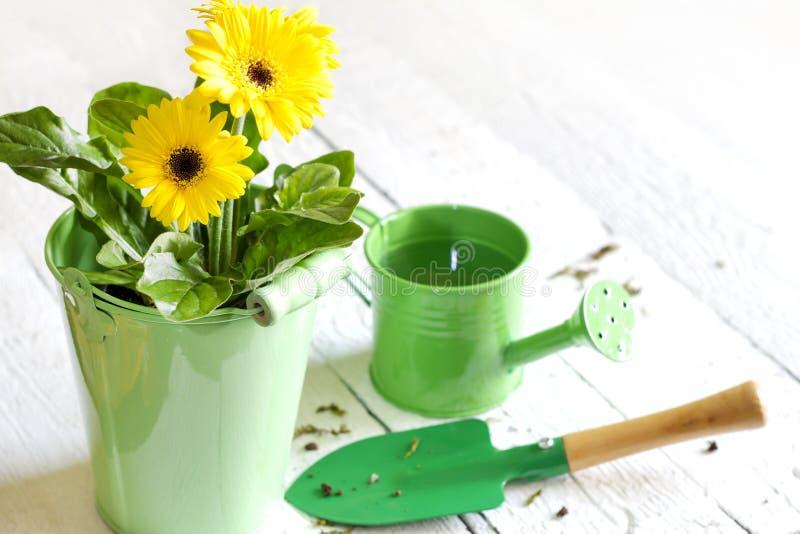 花和园艺工具抽象从事园艺的概念 图库摄影