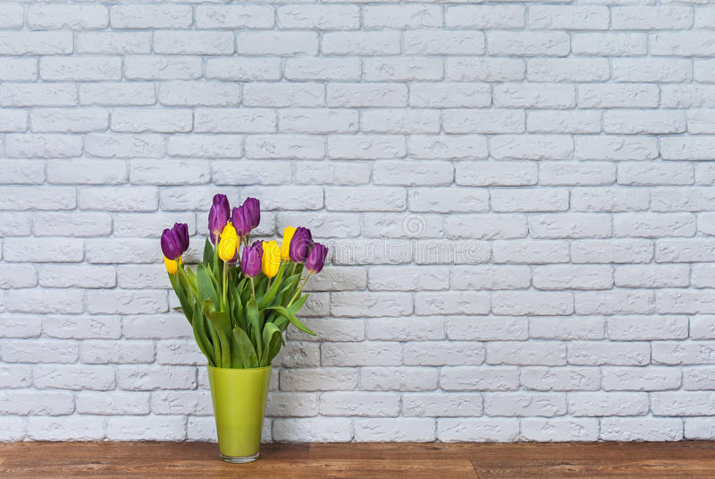 花和墙壁 库存照片