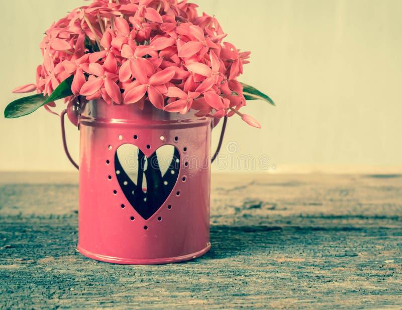 花和心脏形状 图库摄影