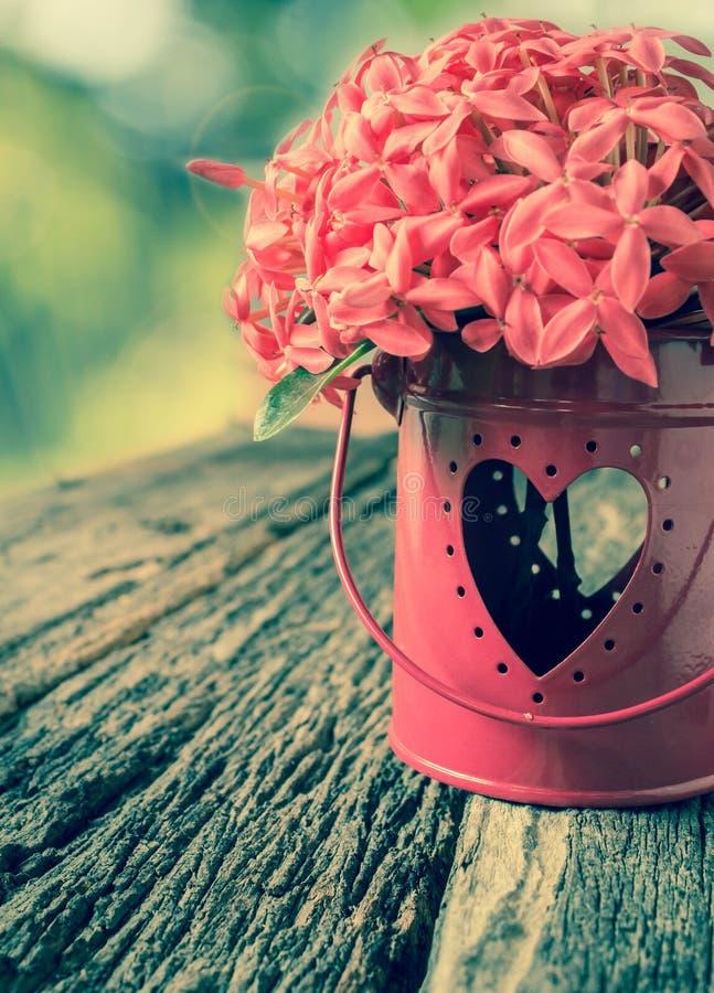 花和心脏形状 免版税库存照片