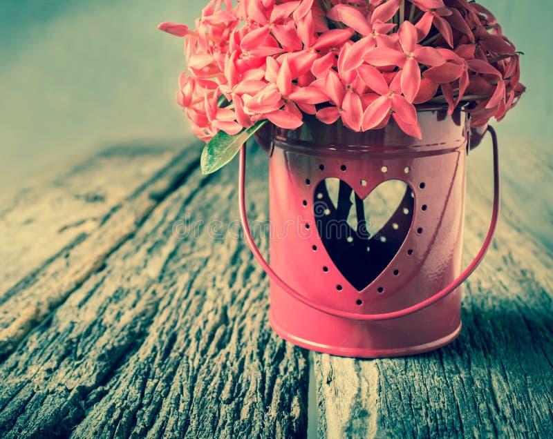 花和心脏形状 库存照片