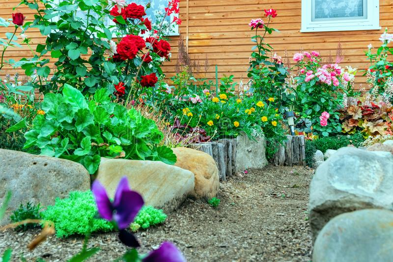 花和石头在房子,前院前面 设计高例证横向计划图表分解力 库存图片