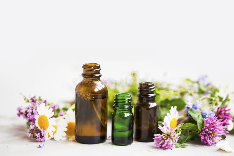 花和草本精油瓶,自然芳香疗法wi 图库摄影